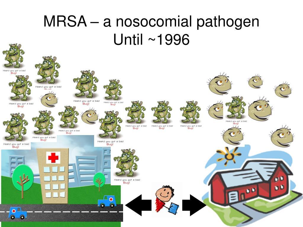MRSA – a nosocomial pathogen