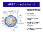 mrsa mechanism i