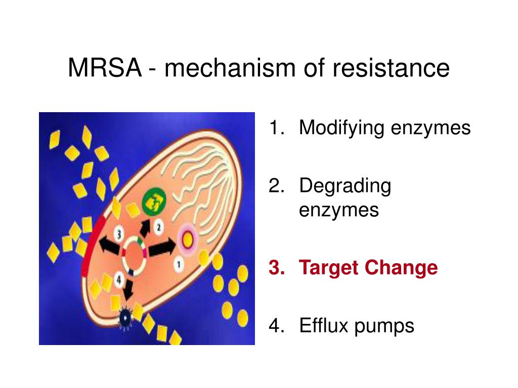 MRSA - mechanism of resistance
