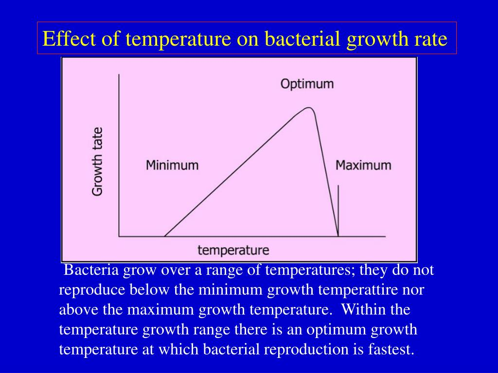 effect of salt on bacterial growth
