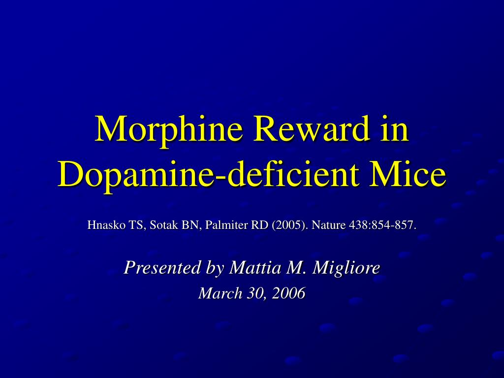 download Maurice: A Novel 2005