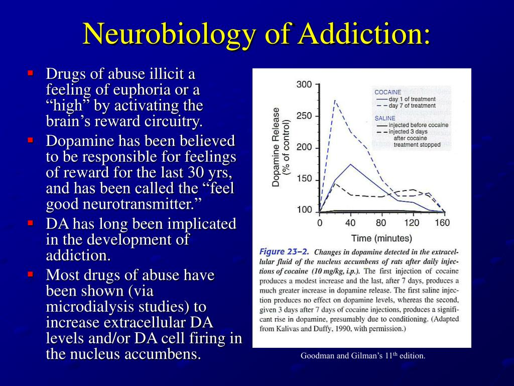 neurobiology and addiction The neurobiology of addiction is a thought provoking tour de force i expect it to become an instant classic and for future editions to gauge our progress in this exciting and compelling field i expect it to become an instant classic and for future editions to gauge our progress in this exciting and compelling field.