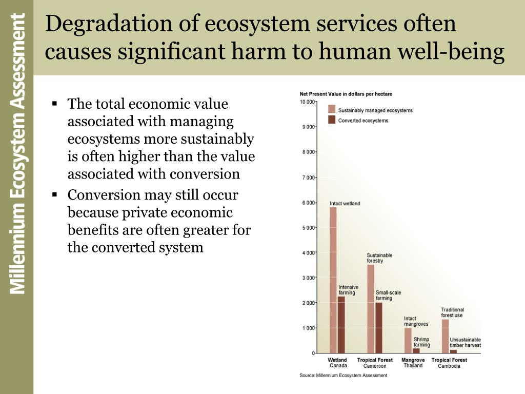 Degradation of ecosystem services often causes significant harm to human well-being