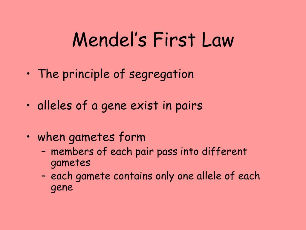 Mendel's First Law