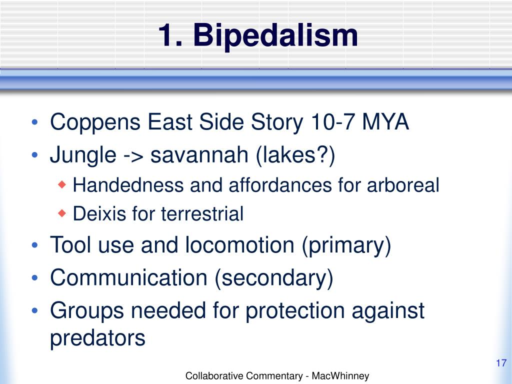 1. Bipedalism
