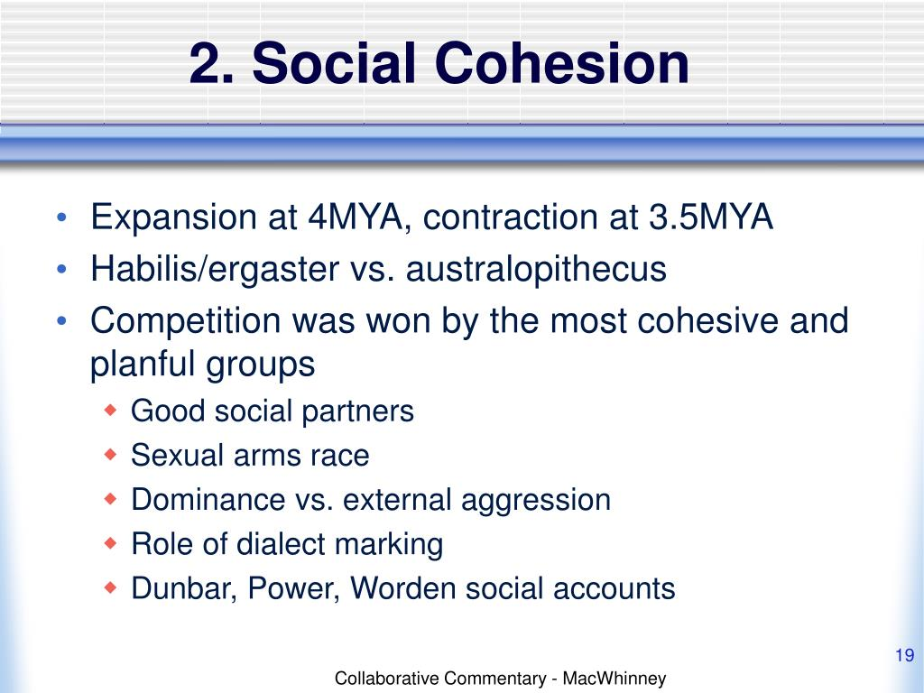 2. Social Cohesion