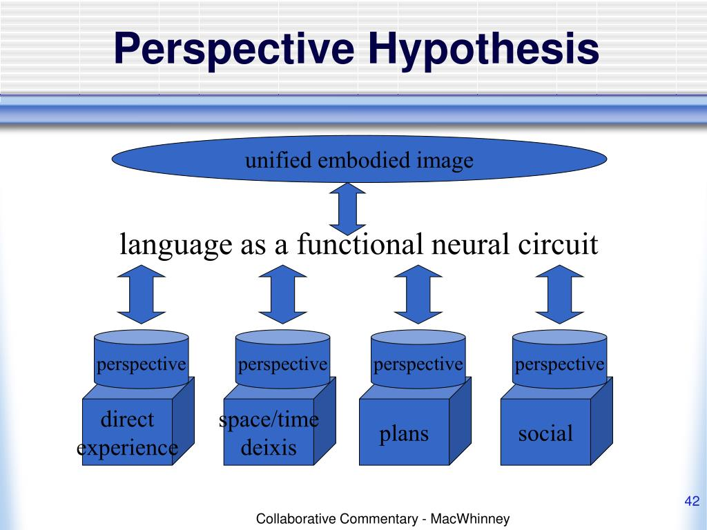 Perspective Hypothesis