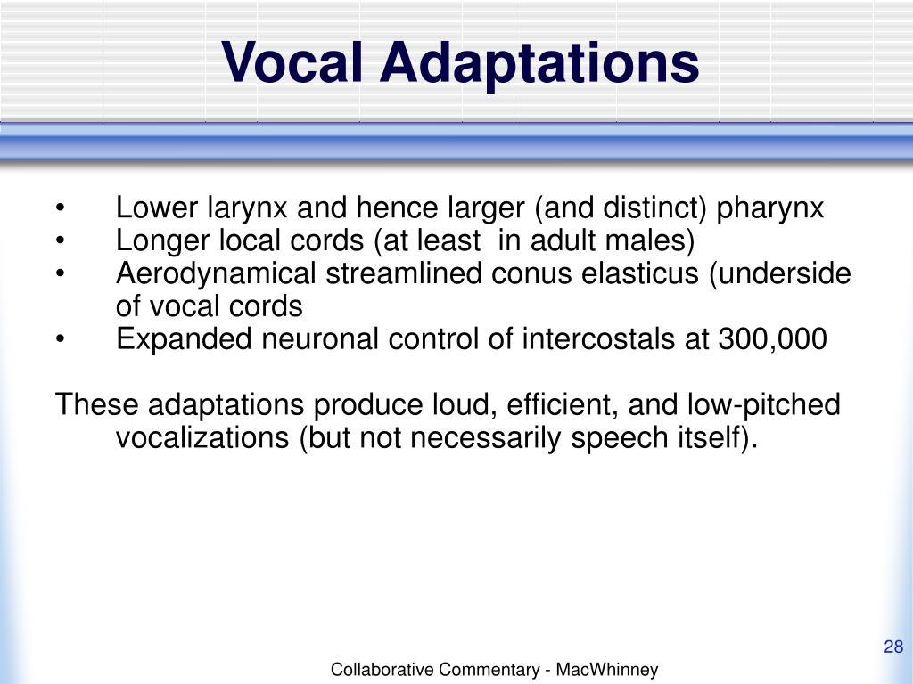 Vocal Adaptations