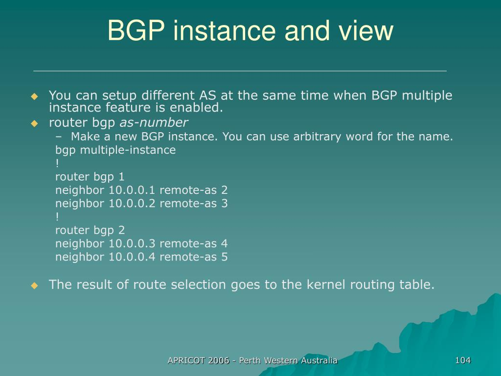 BGP instance and view