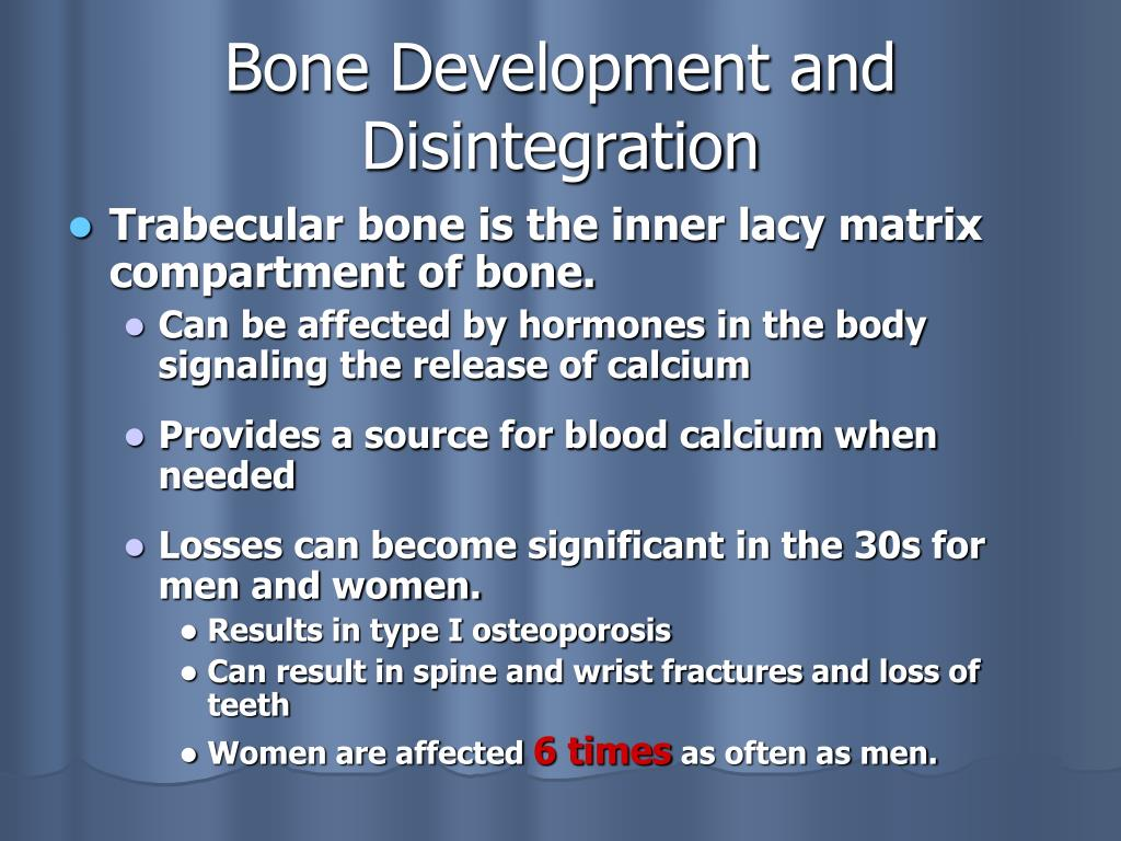Bone Development and Disintegration