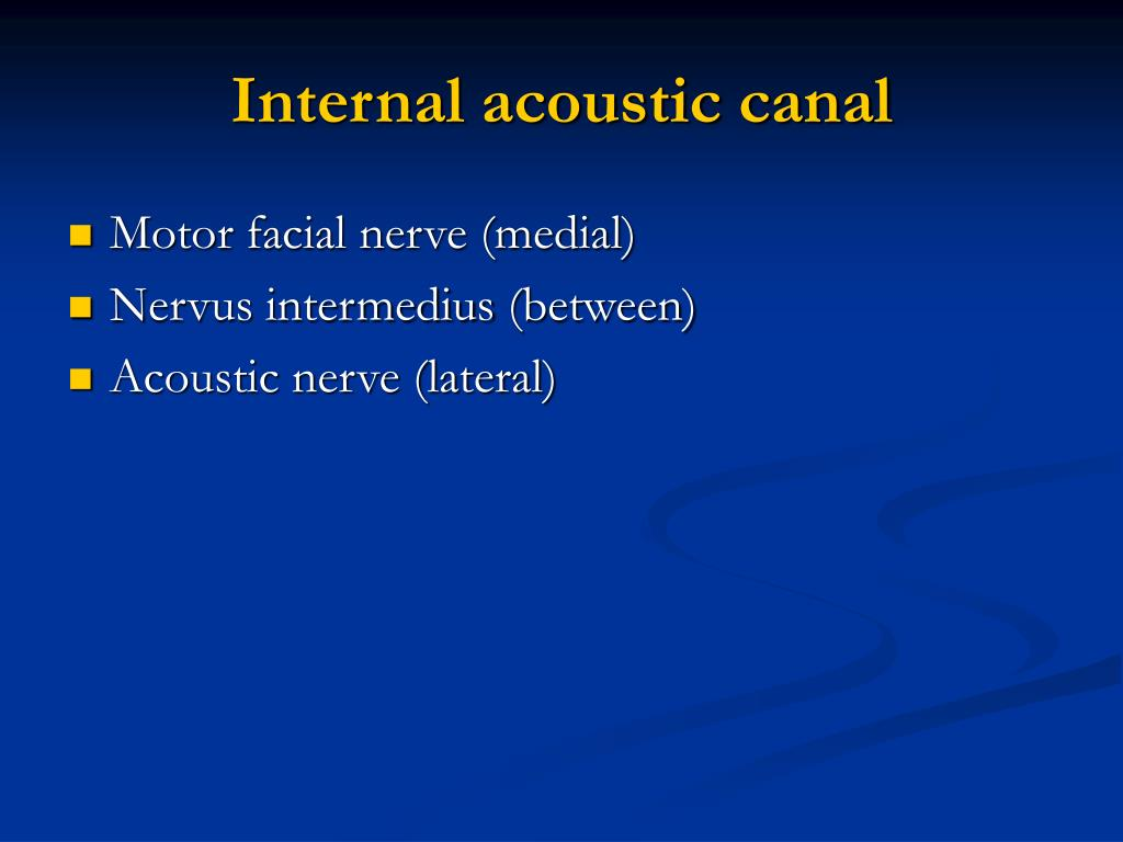 Internal acoustic canal