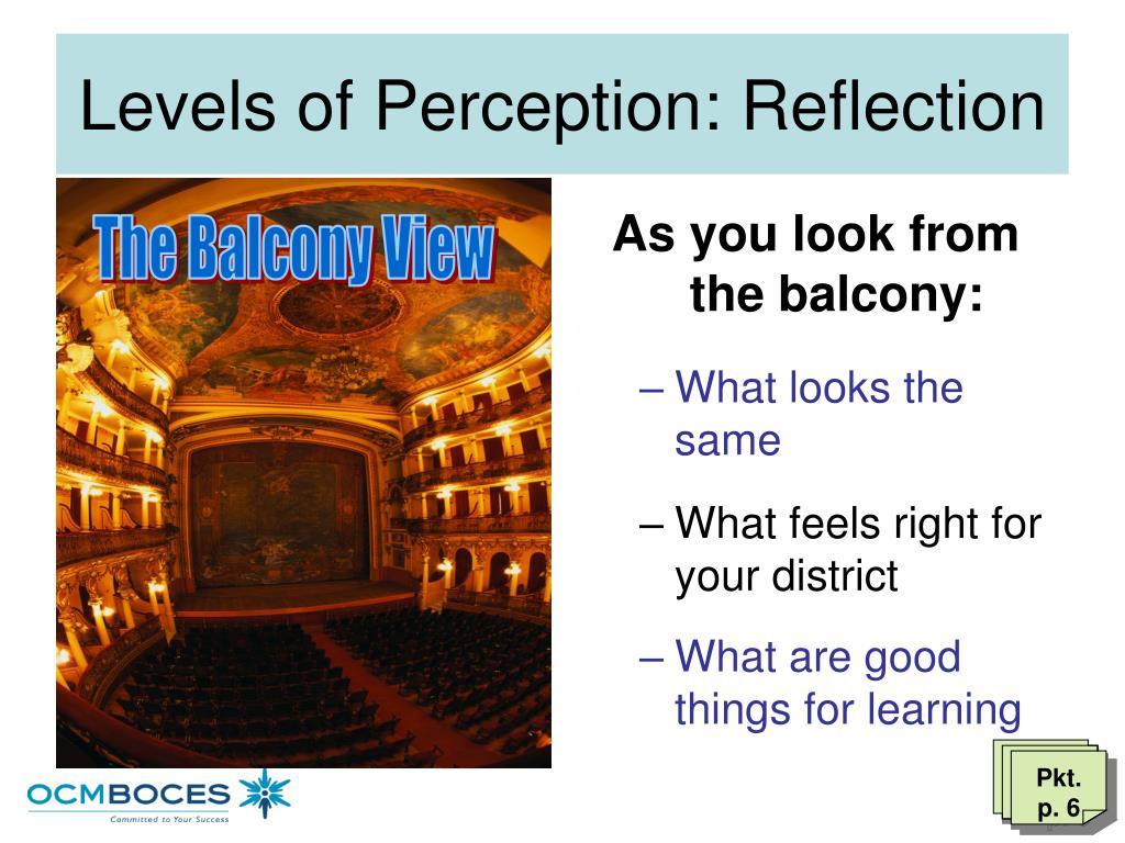 Levels of Perception: Reflection