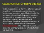 classification of nerve injuries