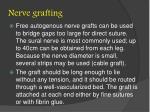 nerve grafting