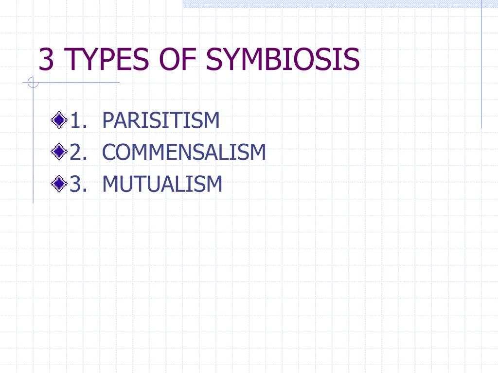 3 TYPES OF SYMBIOSIS