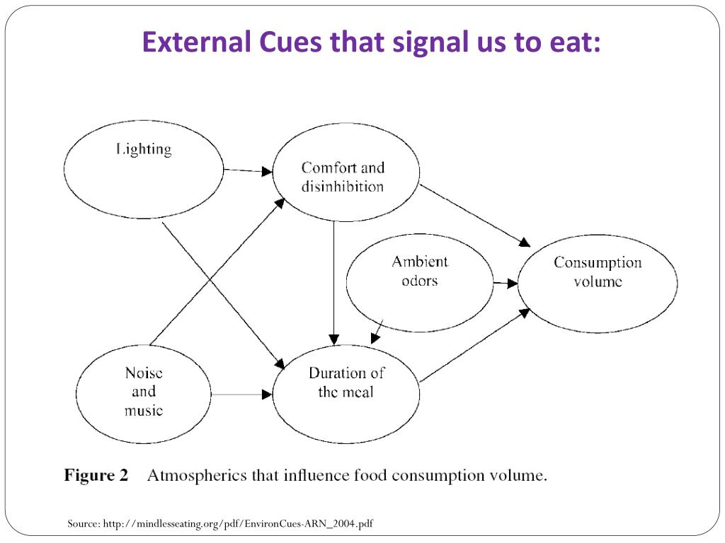 External Cues that signal us to eat: