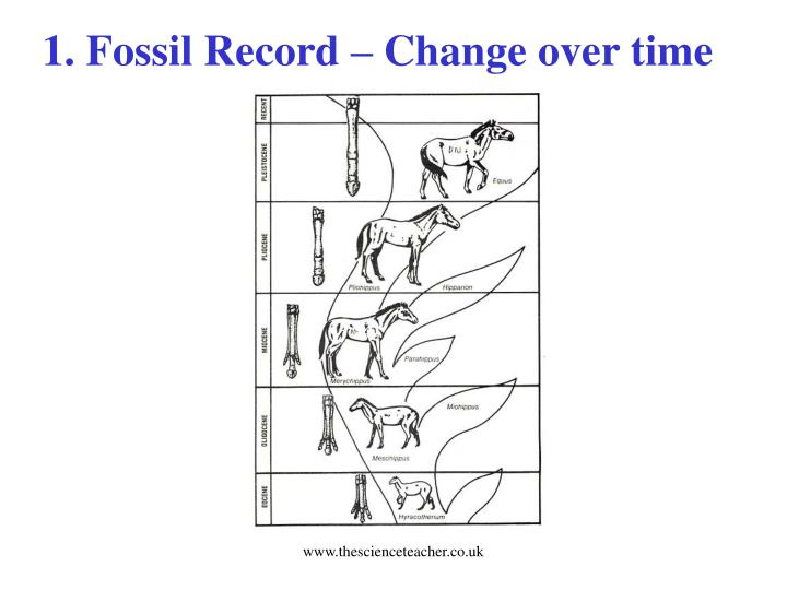1. Fossil Record – Change over time