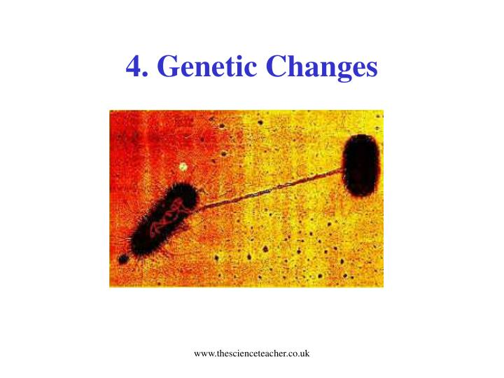 4. Genetic Changes