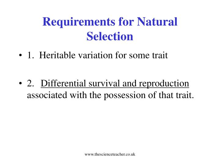 Requirements for Natural Selection