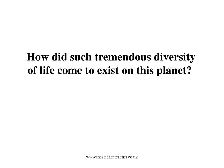 How did such tremendous diversity of life come to exist on this planet?