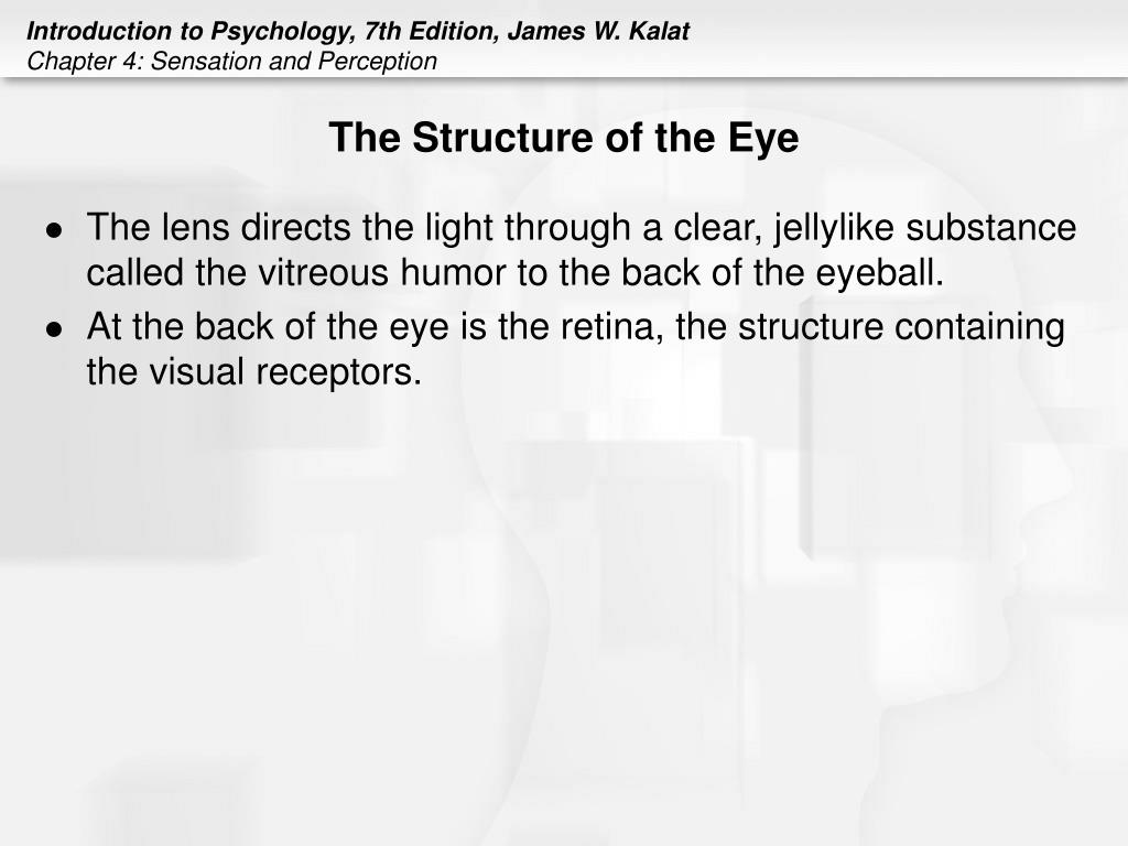 on the surface of the eye is a transparent flexible covering called the cornea The eyelids also help spread tears over the surface of your eye,  transparent layer of tissues covering the front of  the cornea is the transparent,.