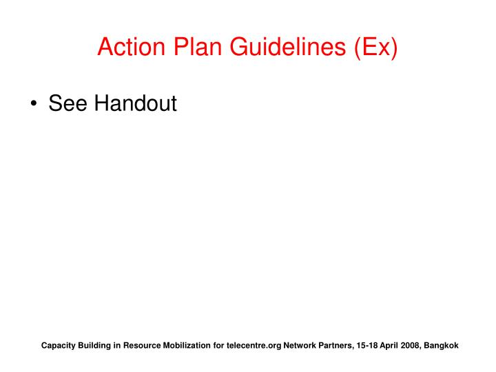 Action Plan Guidelines (Ex)