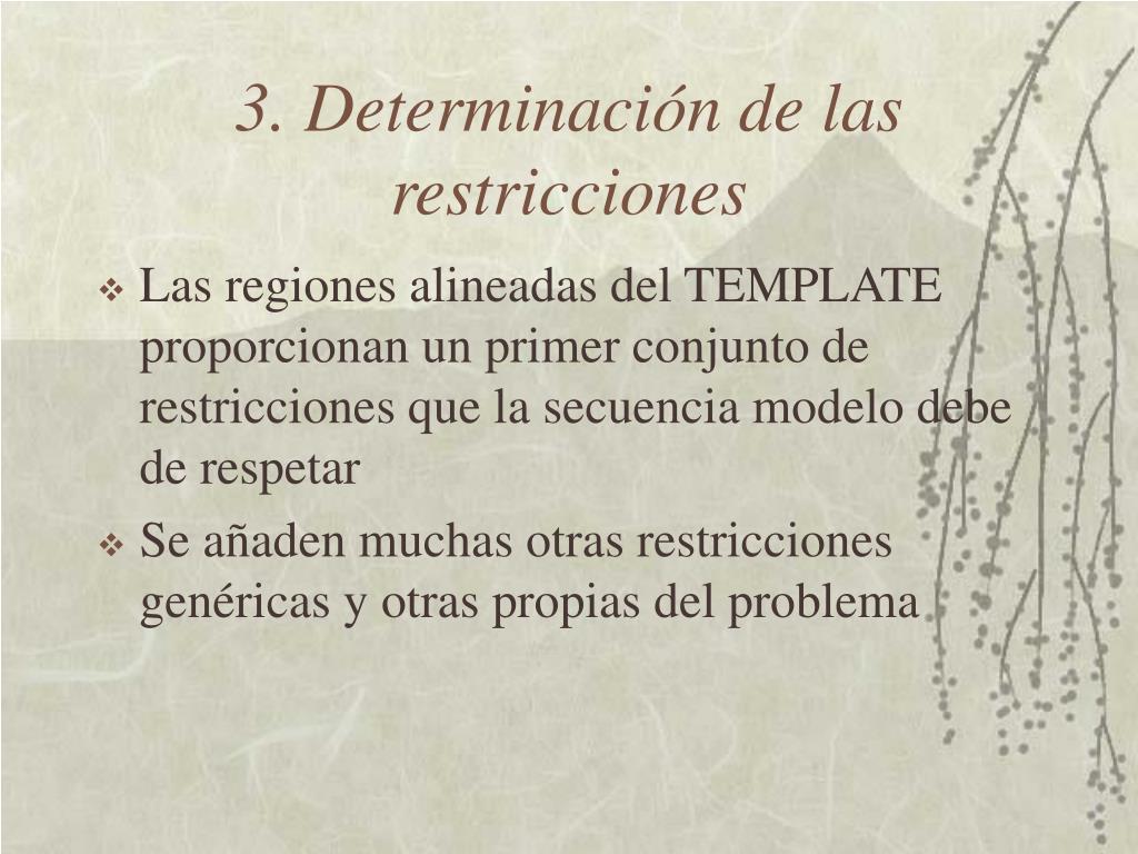 3. Determinación de las restricciones