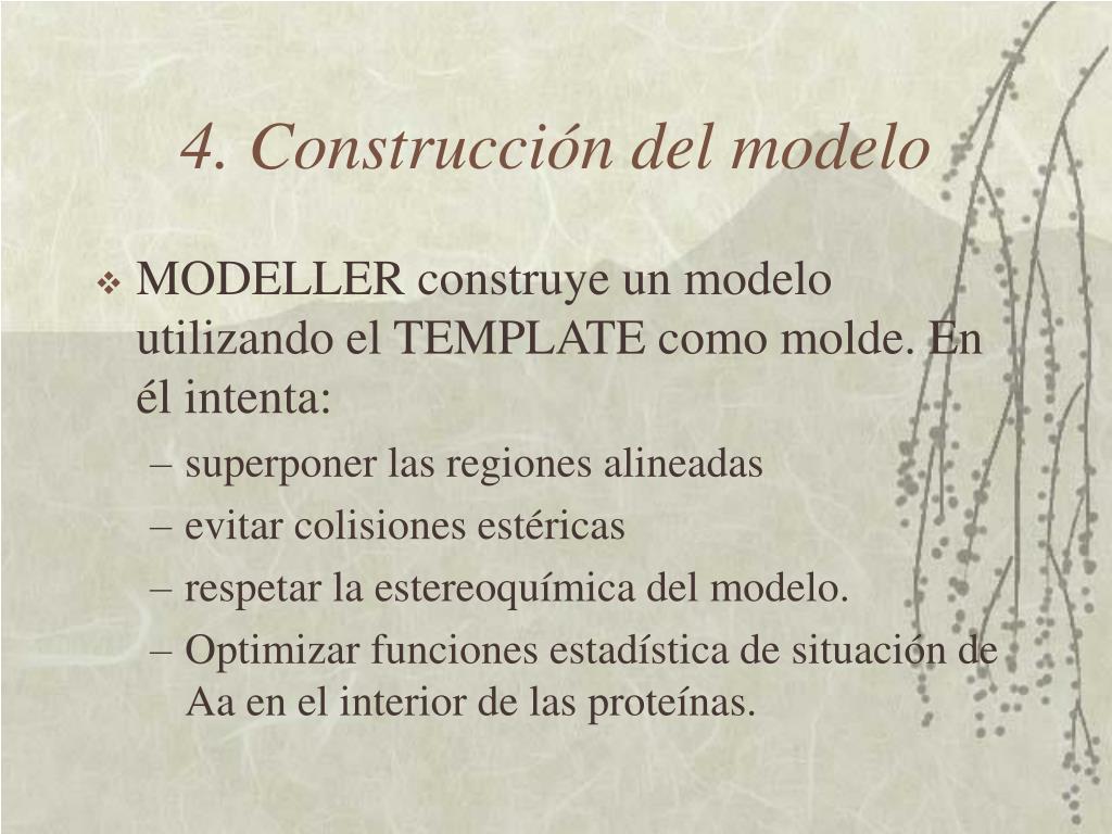 4. Construcción del modelo