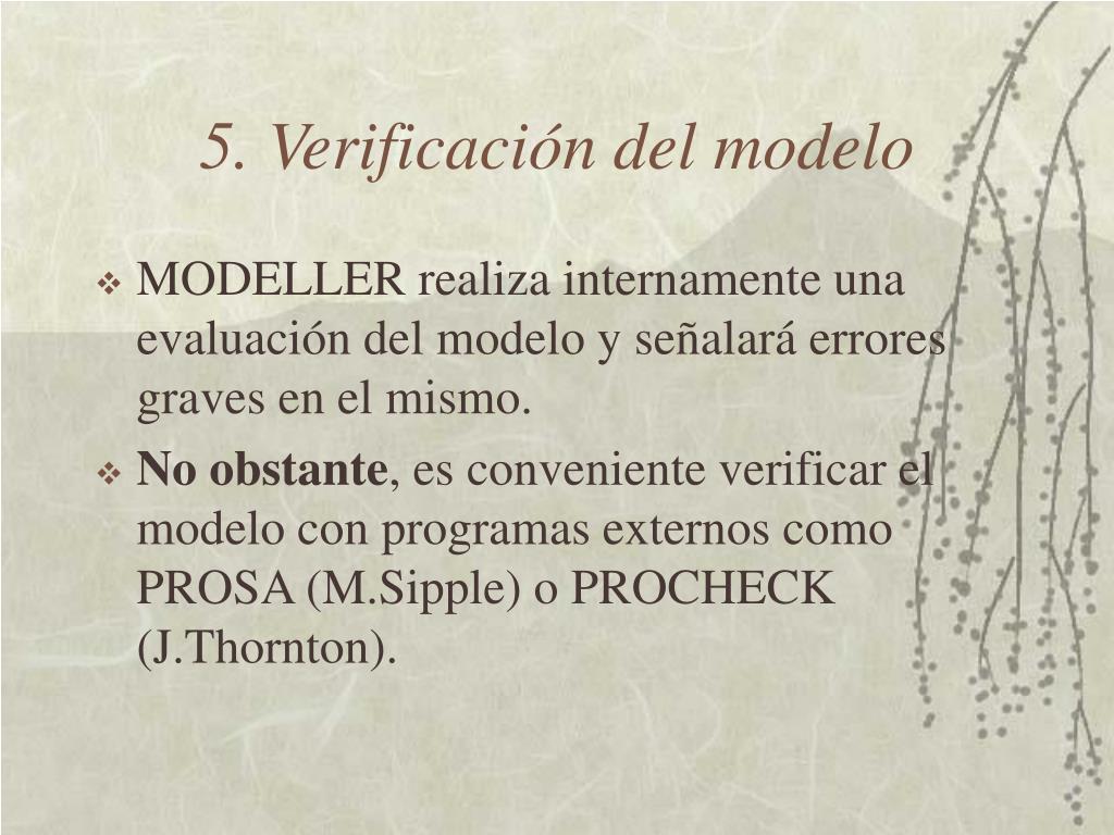 5. Verificación del modelo