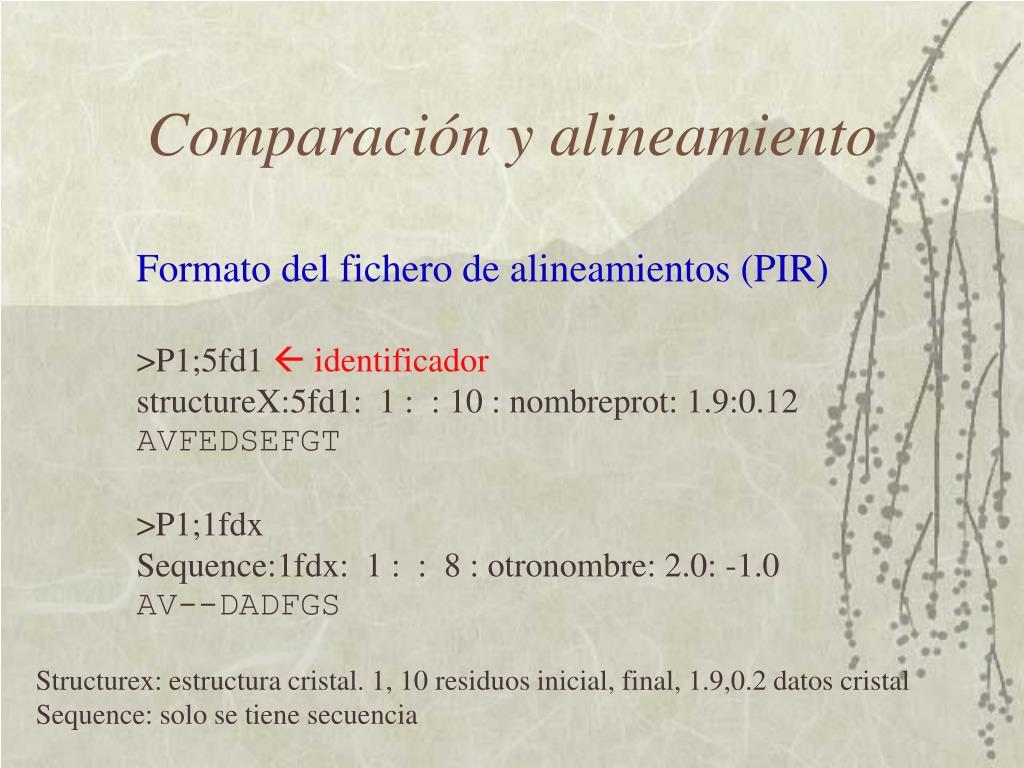 Comparación y alineamiento