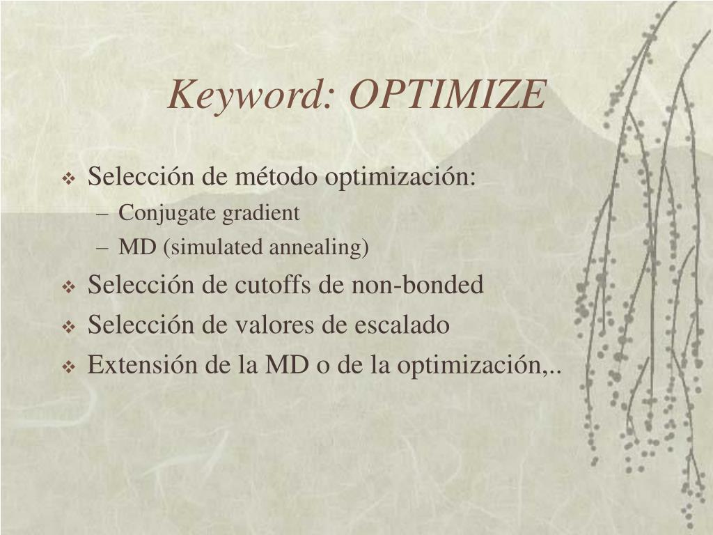 Keyword: OPTIMIZE