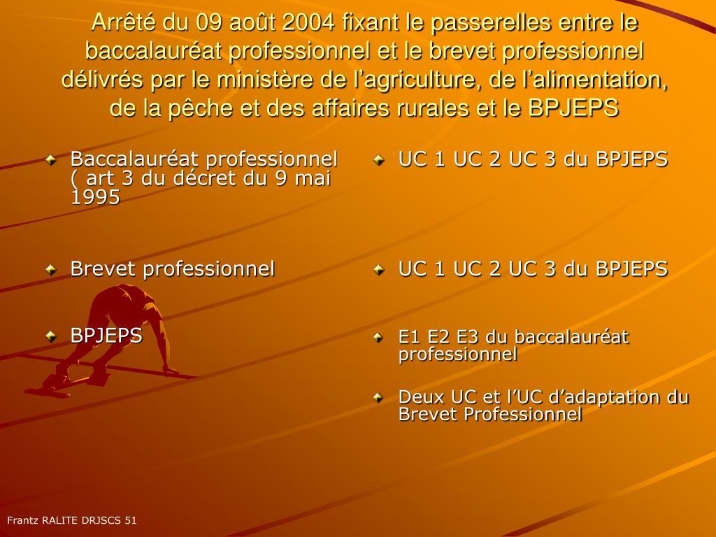 Baccalauréat professionnel ( art 3 du décret du 9 mai 1995