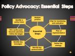policy advocacy essential steps