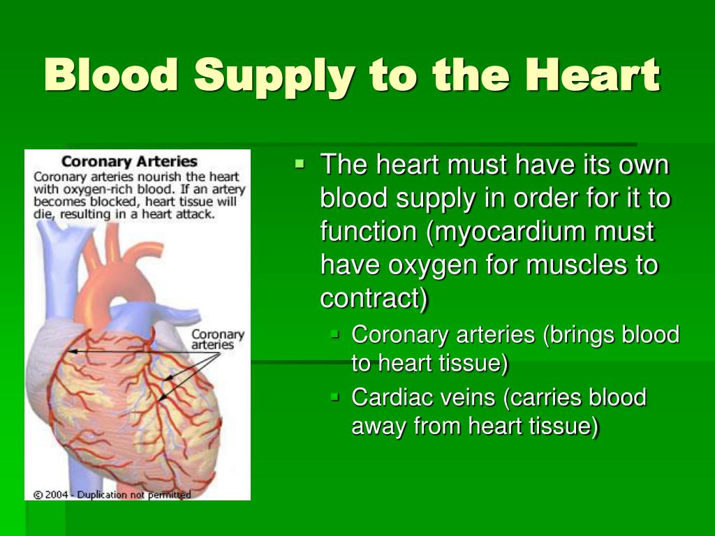 The heart must have its own blood supply in order for it to function (myocardium must have oxygen for muscles to contract)
