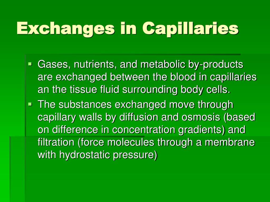 Exchanges in Capillaries