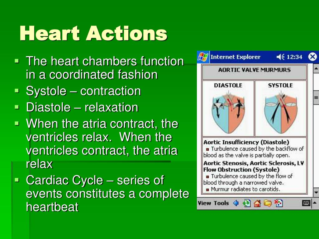 The heart chambers function in a coordinated fashion