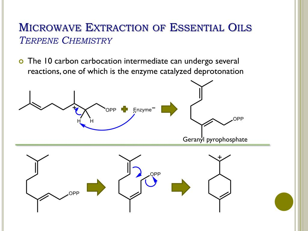 solvent extraction thesis Separation of adjacent rare earth elements using solvent extraction thesis link to document overview other overview abstract thesis (ms, chemical and materials science engineering) -- university of idaho, 2016 | industrial rare earth separation facilities utilize the phosphonic acid pc88a for solvent extraction processes.