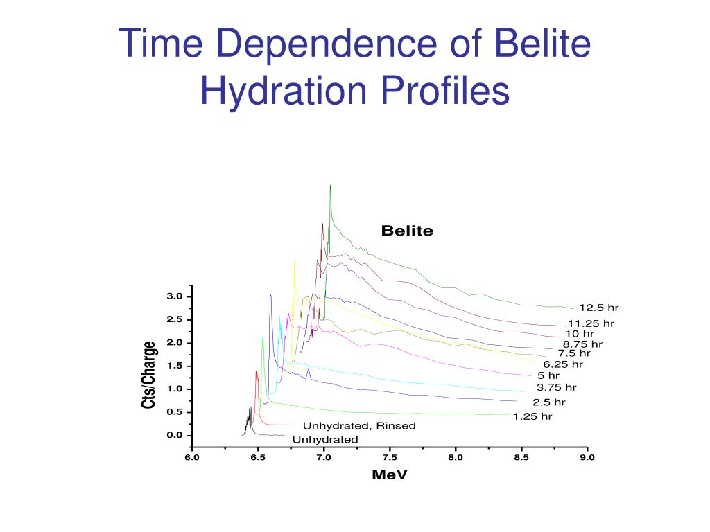 Time Dependence of Belite Hydration Profiles