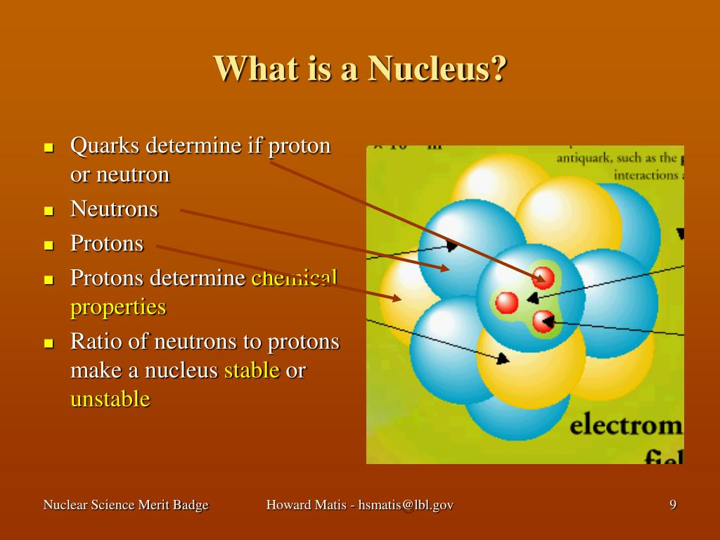 What is a Nucleus?