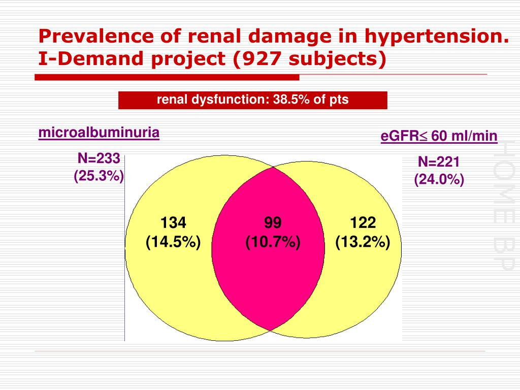 Prevalence of renal damage in hypertension. I-Demand project (927 subjects)