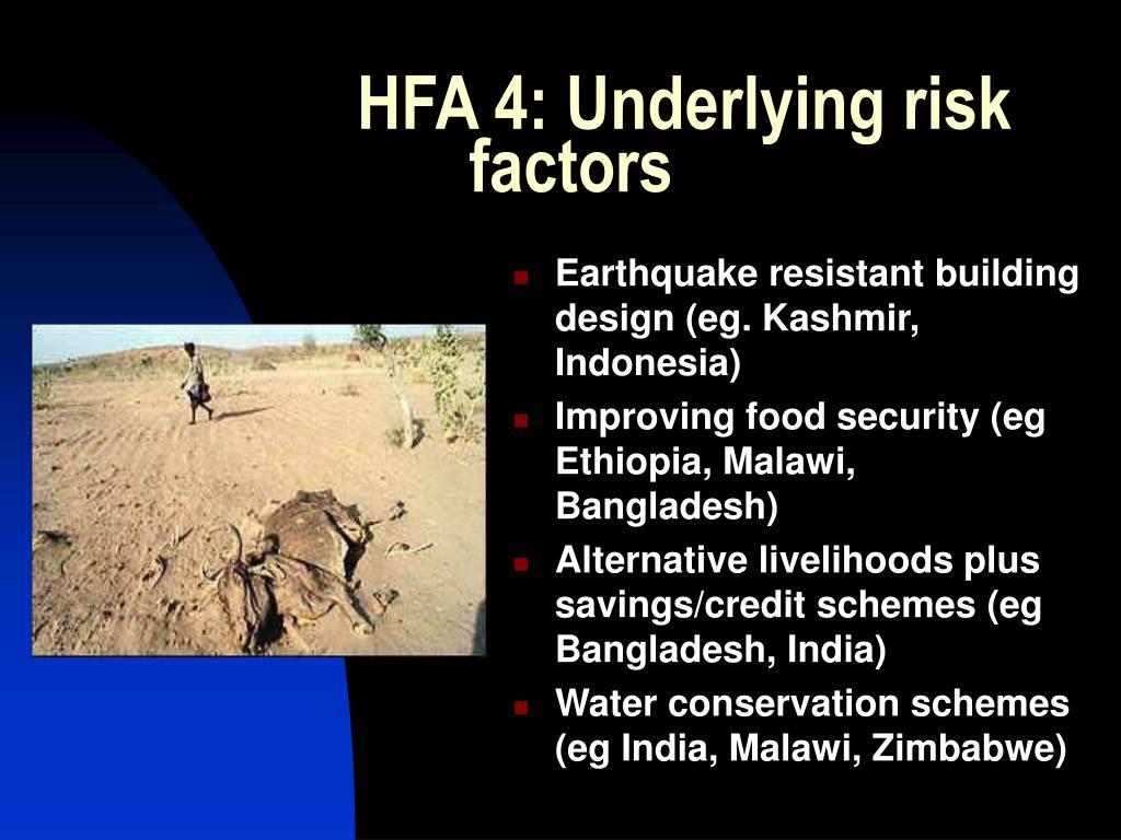 HFA 4: Underlying risk factors