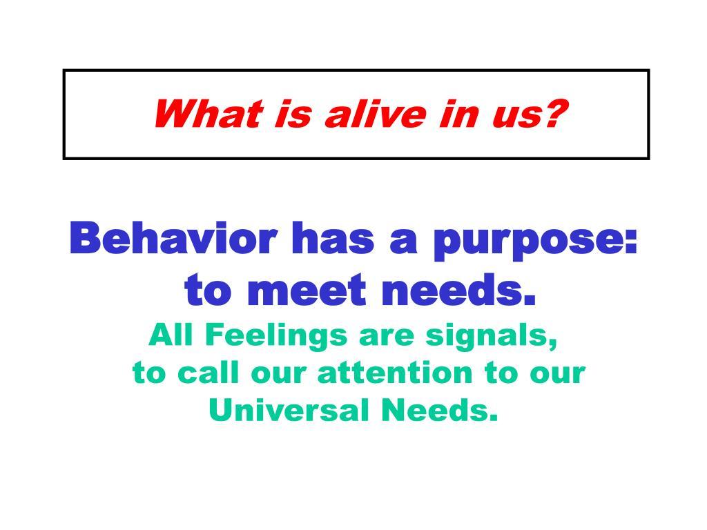 Behavior has a purpose:
