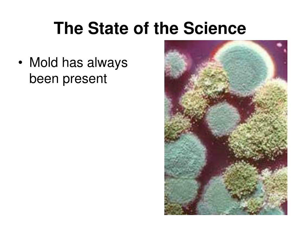 The State of the Science