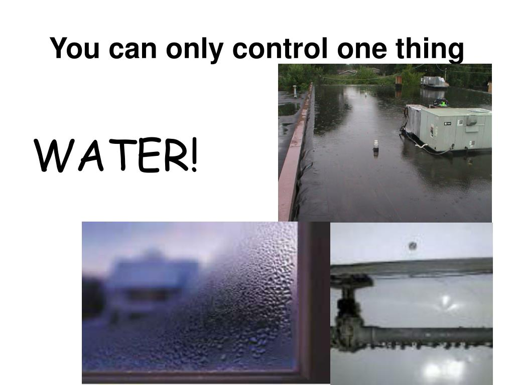 You can only control one thing