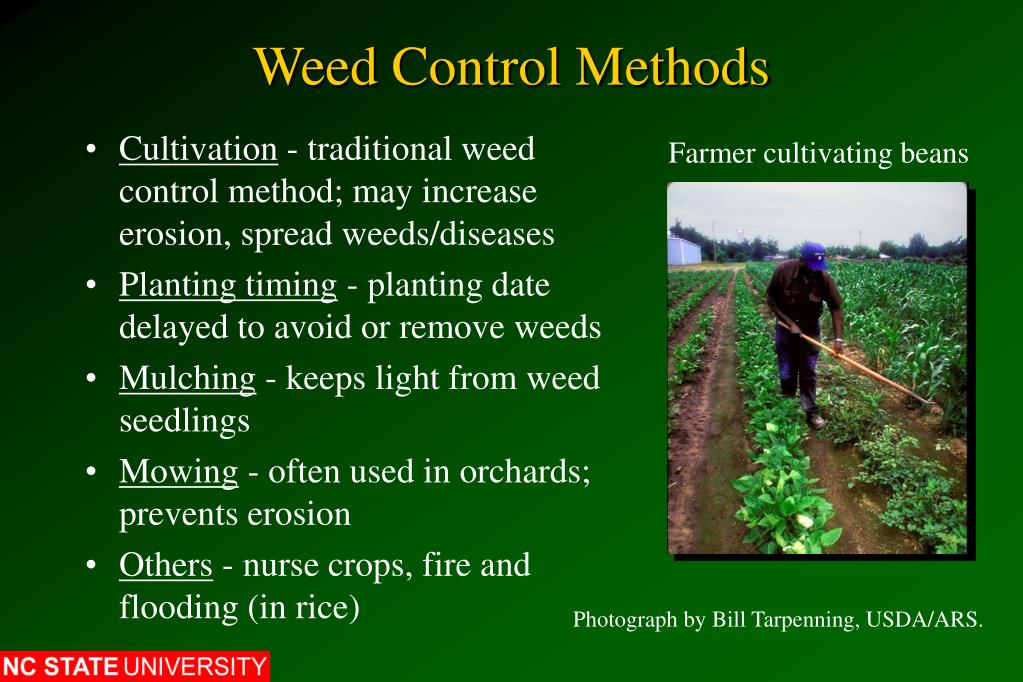 Weed Control Methods