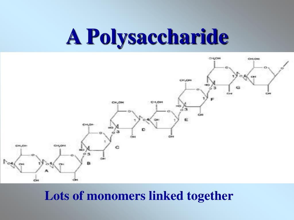 A Polysaccharide