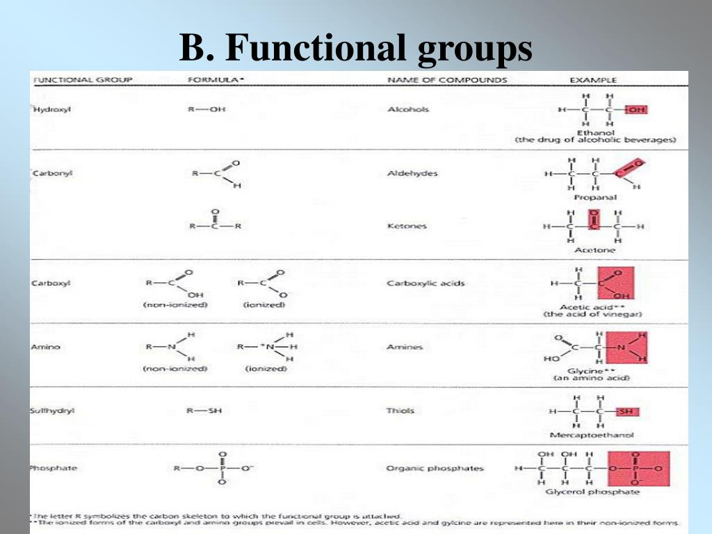 B. Functional groups