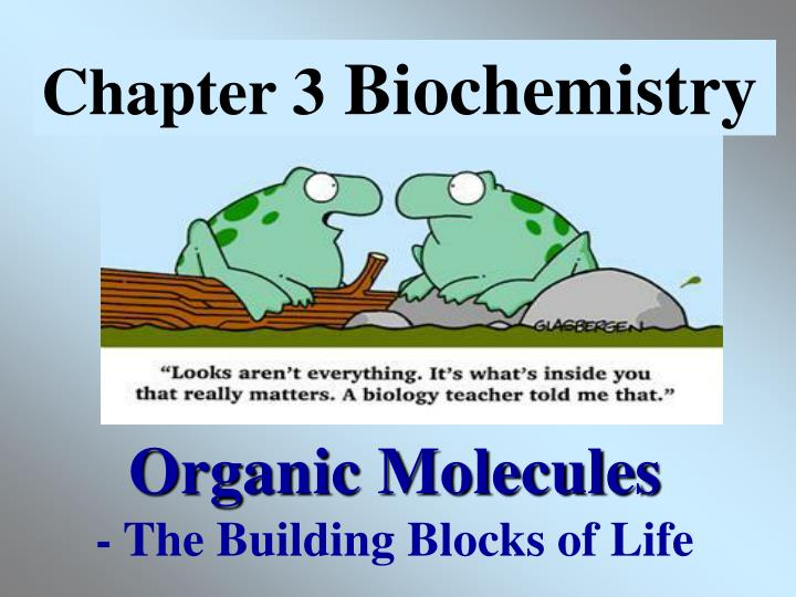 Organic molecules the building blocks of life