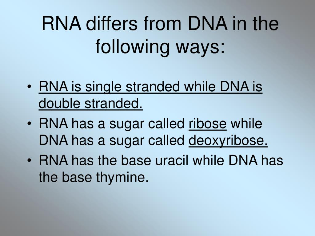 RNA differs from DNA in the following ways: