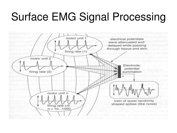 Surface EMG Signal Processing